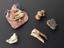 Group shot of A132541 - Large tooth, possibly dogs, in pink and blue silk bag, amuletic, to cure toothache, Lovett