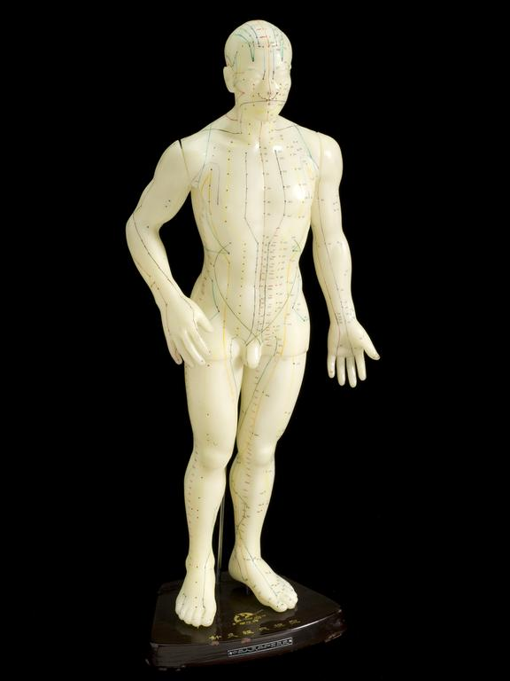Acupuncture figure, male, Hong Kong, 1970 - 1976. Front three quarter view. Black background.