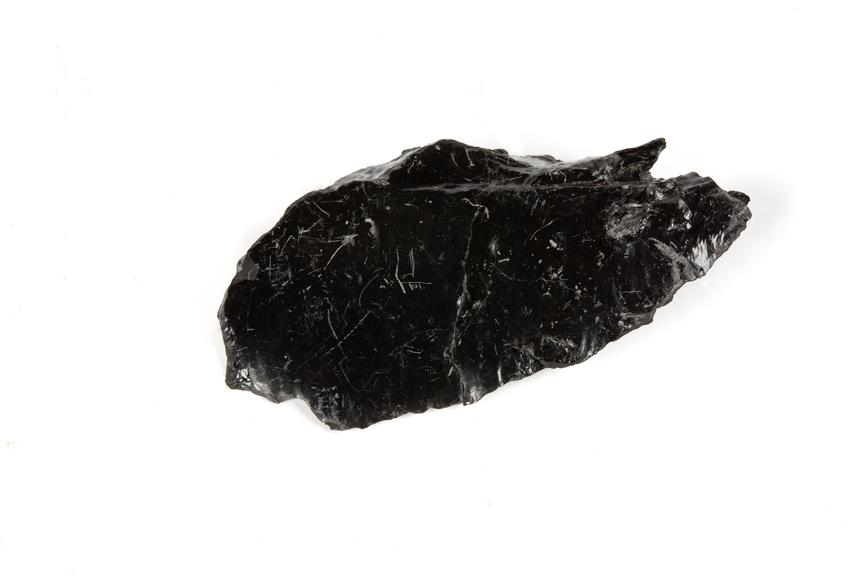 Coal sample found at Bickershaw Colliery, March 1984..Photographed 3/4 view on a white background.