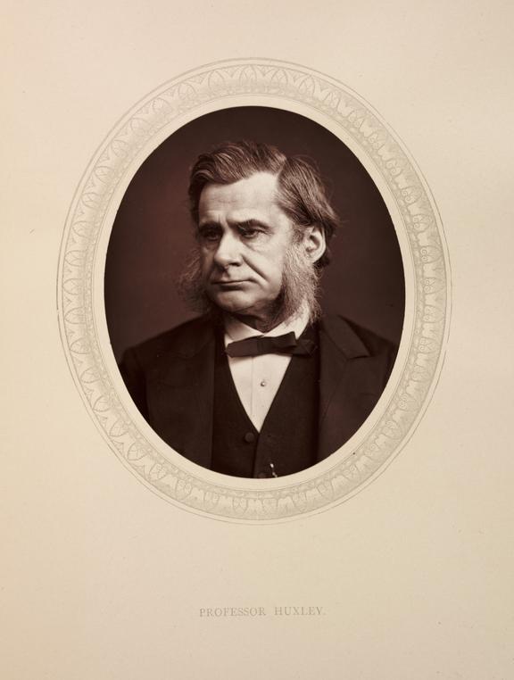 'Professor Huxley', 1880       A photographic portrait of Professor Thomas Henry Huxley [1825-1895] taken by Samuel Robert Lock [1822-1881] and George
