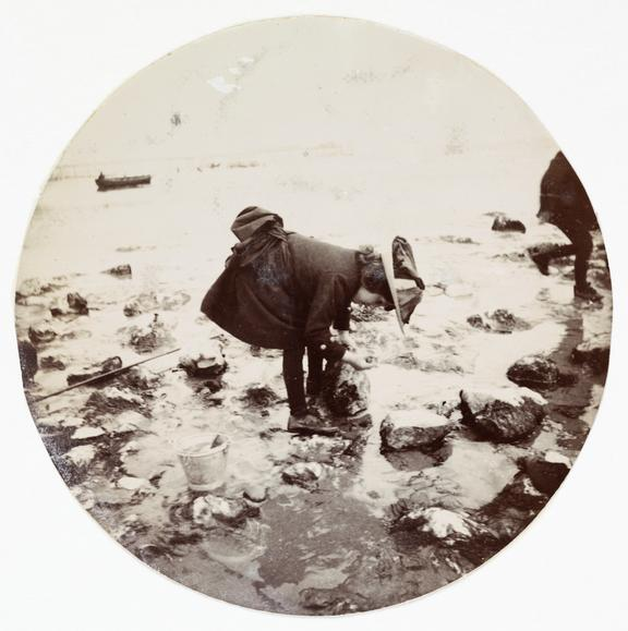 Girl looking in a rock pool, about 1890       A Kodak circular snapshot photograph of a young girl fishing in a rock pool