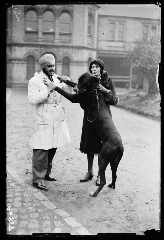 'Large dog greets vet outside the Royal Veterinary College'       A photograph of a large dog leaping up to put his paws on a trainee vet's shoulders