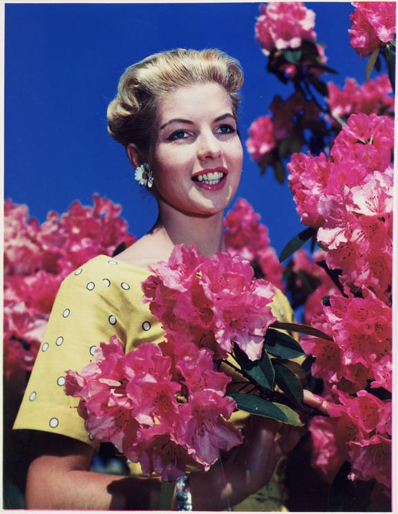 Woman with flowers       A Dye Transfer colour photograph of a woman standing  next to a flowering azalea bush