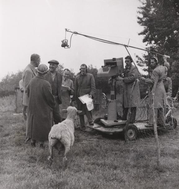'Television Fare, Mrs Jones and her pet ewe'       Photograph entitled 'Television Fare, Mrs Jones and her pet ewe', taken by James Jarché for the Daily Herald in 1946