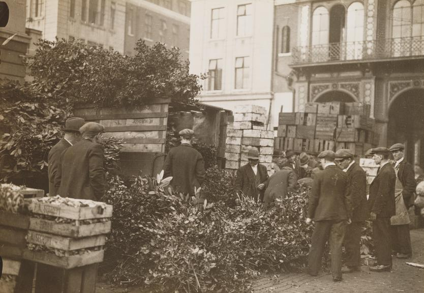 'A delivery of holly in time for Christmas, Covent Garden market, London'       A photograph entitled 'A delivery of holly in time for Christmas, Covent Garden, London'