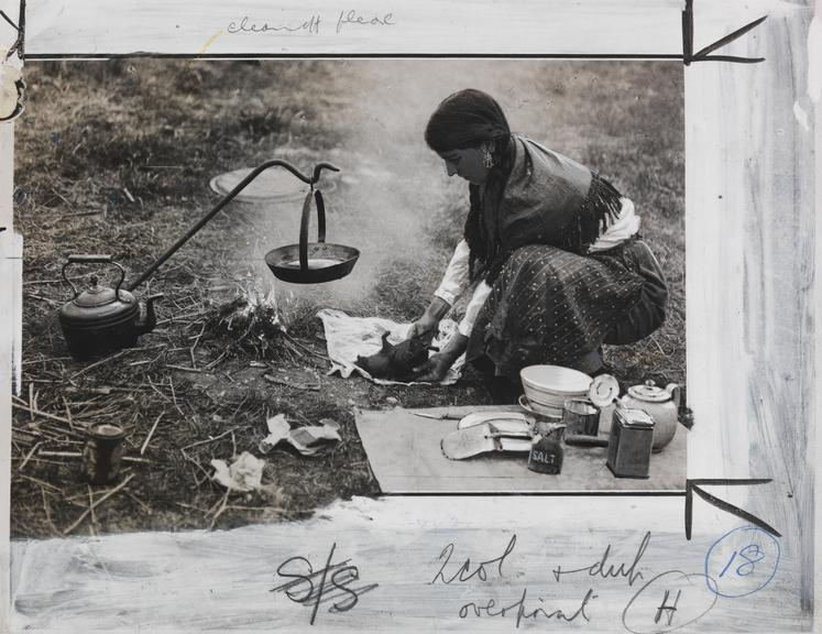 A gypsy woman cooking a hedgehog by the side of the road       A photograph of gypsy woman cooking a hedgehog by the side of the road, taken in 1933