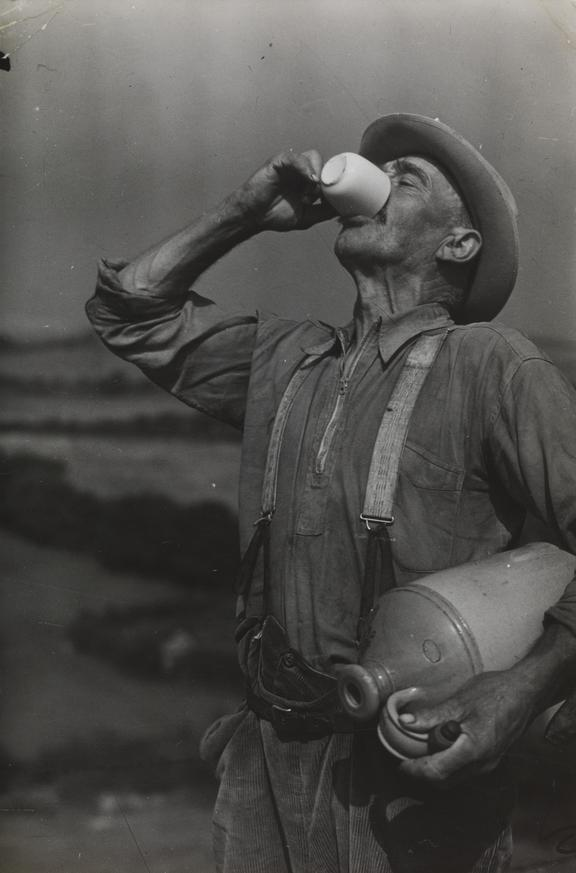 'Farm worker George White drinks cider on his lunch break'       A photograph of farm worker George White drinking cider, taken in August 1937 by Edward Malindine for the Daily Herald