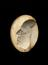 """Plaster mould, Boulton death mask, oval 3 3/4"""" x 3"""".  Overhead view of whole object against black background."""