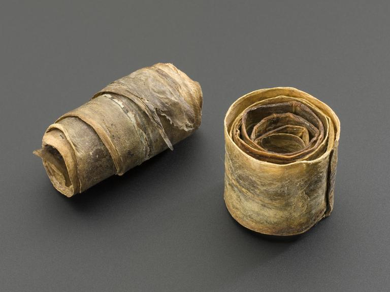 Coils of eel skin. Group shot of, from left to right A665585 Coil of eel skin strip, amuletic worn round finger to cure, ward off cramp,