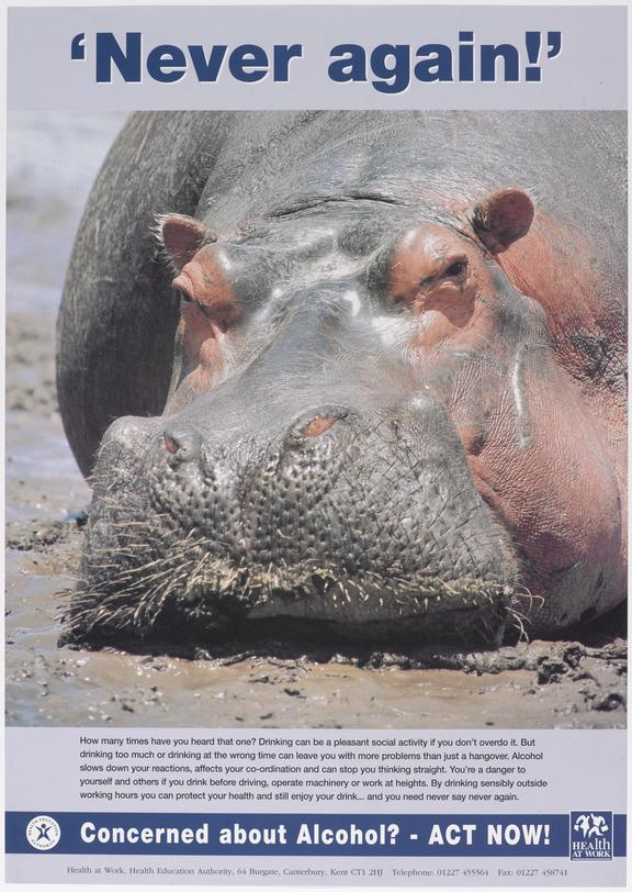 Poster (colour) 'Never again', 'Concerned about alcohol? - Act NOW!'  with illustration of wallowing hippopotamus.