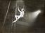"Anna Neagle on the trapeze in the film ""The Three Maxims"", 26th March 1936"
