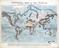 Geographical Diagram: Physical Map of the world from the discoveries of the most eminent geographers. Published by