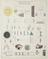 Optics. Natural Philosophy Diagram. Illustration of Natural Philosophy. Published by James Reynolds, 174 Strand. Drawn