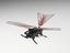 DASH +Wings, six legged, two winged running robot, made by Kevin Peterson, in the Biomimetic Millisystems Lab at the