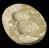 "1 Plaster mould, marked on back ""R.Hamilton mould"", oval 3 1/2 x 2 3/4"