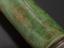 Telescope by Yarwell, signed 'John Yarwell, Fecit', c.1690, [London].  8-draw, object glass 1-inch, length closed 21