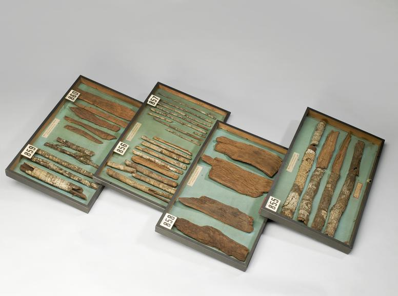 Group shot of from left to right of A654755 Specimens of cinchona calisaya bark, probably from Peru, in glazed case, of