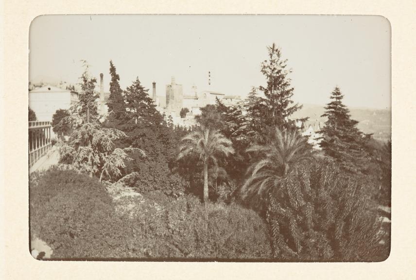 Black and white untitled photograph showing a view looking over tree-tops toward buildings in the distance. Various
