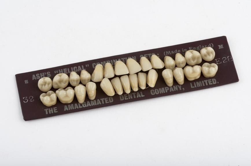False tooth set, Ash's Helical' diatorics with 'Natureform' posteriors, porcelain, mounted on card, by the Amalgamated