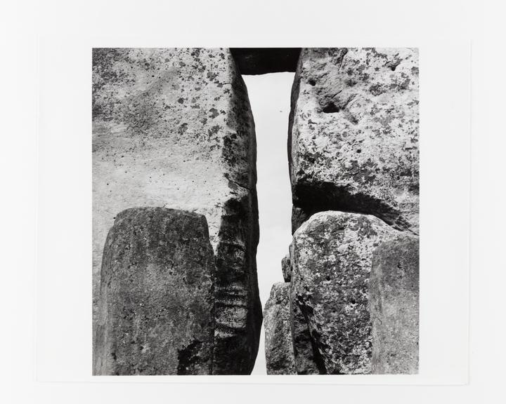 Andor Kraszna Krausz Collection. Silver gelatin copy print made ca.1970s. Photograph by Sir Cecil Beaton showing cattle
