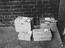 """""""Live Chicks"""" in boxes awaiting transportation by rail."""
