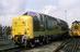 "BR Co-Co Diesel-Electric ""Deltic"" Class 55 No 55002 - 1988."
