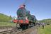 LNWR 0-8-0 G2 Class No. 485 (Super D) - 2006.